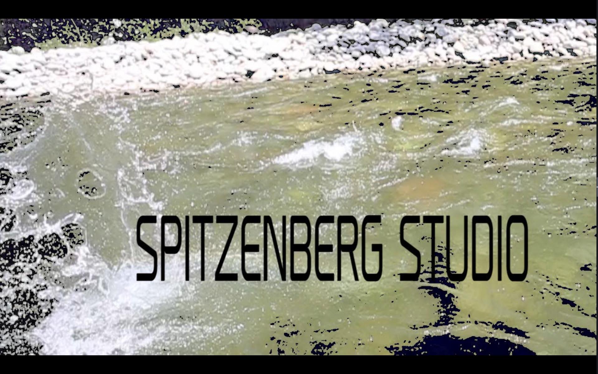 FilmySpitzenbLogo